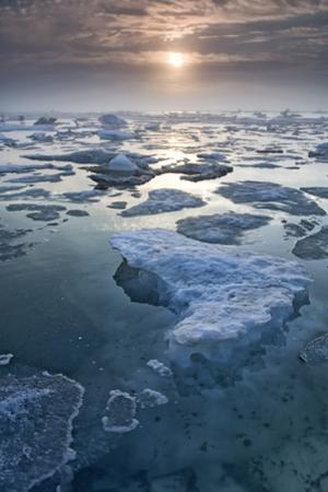 Arctic Sea Ice Melting Along the Coast. Every Year it Melts Earlier Due to Climate Change by Peter Mather