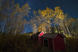 The Graveyard at Little Salmon Village, and Surrounding Trees, Illuminated at Night by Peter Mather