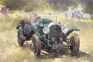The Green Bentley at Althorp, 1994 by Peter Miller