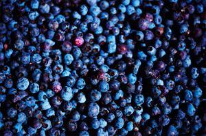 Blueberries II by Peter Morneau
