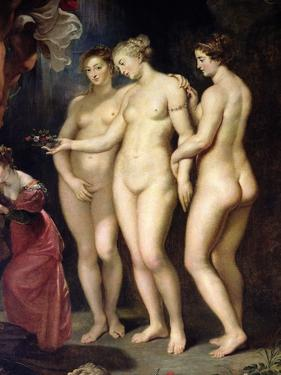 The Medici Cycle: Education of Marie de Medici, Detail of the Three Graces, 1621-25 by Peter Paul Rubens