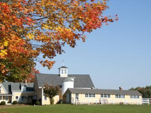 Farmhouse and Fall Colours Near Kennebunkport by Peter Ptschelinzew