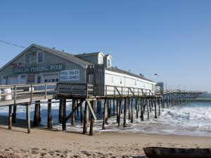 Historic Avalon Pier by Peter Ptschelinzew
