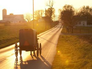 Horse and Buggy in Amish Community by Peter Ptschelinzew