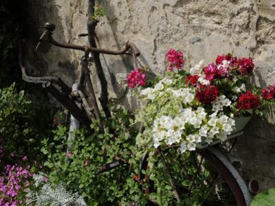 Bicycle Decorated with Flowers, Brantome, Dordogne, France, Europe by Peter Richardson