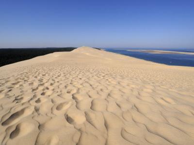Dunes Du Pyla, Bay of Arcachon, Cote D'Argent, Aquitaine, France, Europe