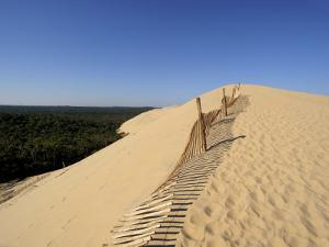 Dunes Du Pyla, Bay of Arcachon, Cote D'Argent, Aquitaine, France, Europe by Peter Richardson