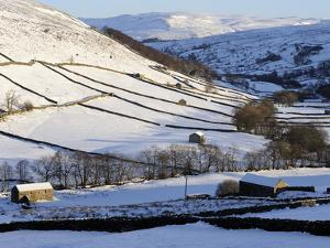 Stone Barns in a Winter Landscape, Swaledale, Yorkshire Dales National Park, North Yorkshire, Engla by Peter Richardson