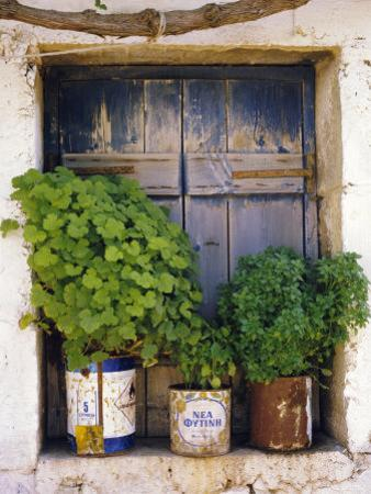 Windowsill, Paleohora, Crete, Greece by Peter Ryan