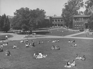 Overall View of Campus at Los Angeles City College by Peter Stackpole