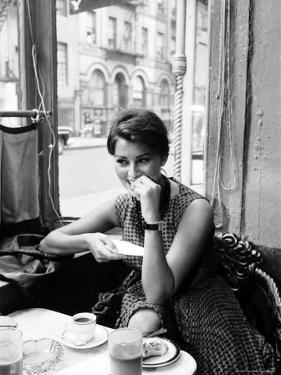 Sophia Loren by Peter Stackpole