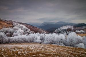Frosty Breath by Peter Svoboda