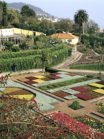 Botanical Gardens, Funchal, Madeira, PortugalPeter Thompson