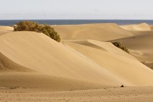 Maspalomas Sand Dunes, Gran Canaria, Canary Islands, Spain by Peter Thompson