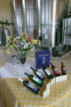 Metaxas Wine Estate, Kefalonia, Greece by Peter Thompson