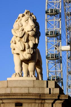 South Bank Lion, London by Peter Thompson