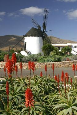 Windmill, Antigua, Fuerteventura, Canary Islands by Peter Thompson