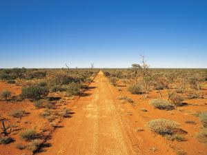 Gunbarrel Highway in Outback Western Australia by Peter Walton Photography