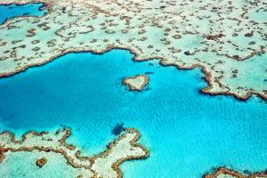Heart Reef in the Great Barrier Reef Marine Park, Whitsunday Islands, Coral Sea, World Heritage Are by Peter Walton Photography