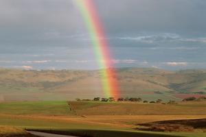 Rainbow over Jamestown Farmland in South Australia by Peter Walton Photography
