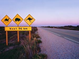 Road Signs on the Eyre Highway near Eucla, Nullarbor National Park, South Australia by Peter Walton Photography