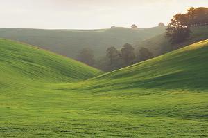 Rolling Hills, Gippsland, Australia by Peter Walton Photography