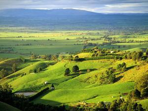 View over the Latrobe Valley to the Baw Baw Ranges, West Gippsland, Victoria, Australia by Peter Walton Photography