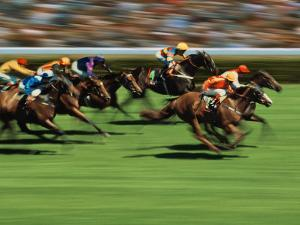 Thoroughbred Race in Action by Peter Walton