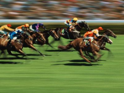 Thoroughbred Race in Action