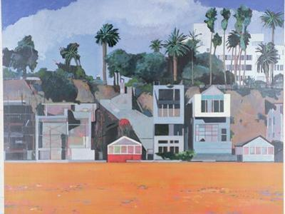 Houses under the Cliff, Santa Monica, USA, 2002 by Peter Wilson