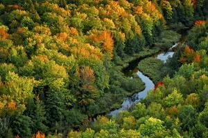 Michigan, Porcupine Mountains in Morning Sun with a Small Stream by Petr Bednarik