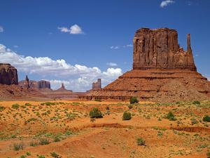 USA, Utah, Monument Valley. Mesas in the Middle of the Desert by Petr Bednarik