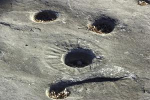 Petroglyph and Bedrock Mortar Holes, or Chaw'se, Used by Miwok to Grind Acorns and Seeds, CA