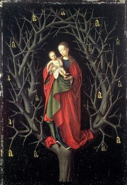 Our Lady of the Dry Tree C.1450 by Petrus Christus