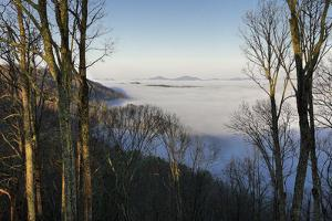 Early Morning Light and Clouds in the Valleys Make Mountains Look Like Islands by Petteway White