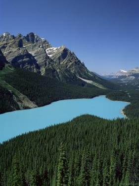 Peyto Lake, Banff National Park, Unesco World Heritage Site, Alberta, Rockies, Canada