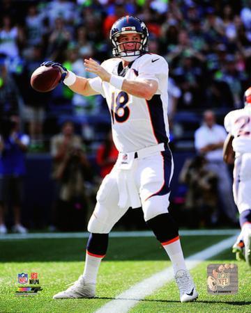 Peyton Manning 2014 Action