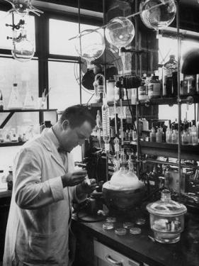 Ph.D. Dr. Aaron Bendich in Laboratory Study