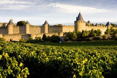 Carcassonne, Languedoc-Roussillon, France by phbcz