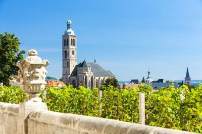 Church of St. James with Vineyard at Front, Kutna Hora, Czech Republic by phbcz