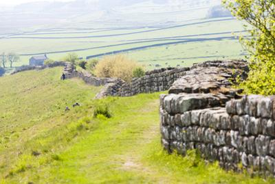 Hadrian's Wall, Northumberland, England by phbcz