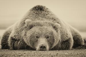 Deep Sleep by PHBurchett