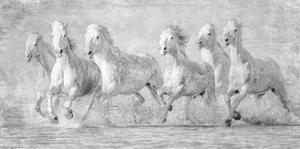 Water Horses V by PHBurchett