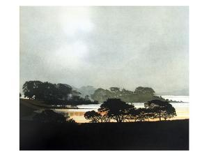 After the Storm by Phil Greenwood