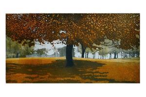 Autumn Heath by Phil Greenwood