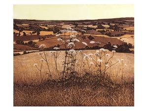 Autumn Vale by Phil Greenwood