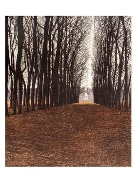 Avenue by Phil Greenwood