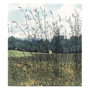 Black Grass by Phil Greenwood