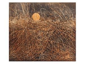 Bracken Moon by Phil Greenwood