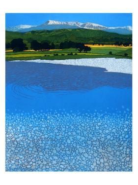 Cadair by Phil Greenwood